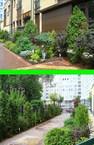 Ландшафтный дизайн в Москве