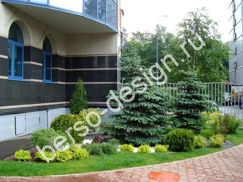 Дизайн около дома