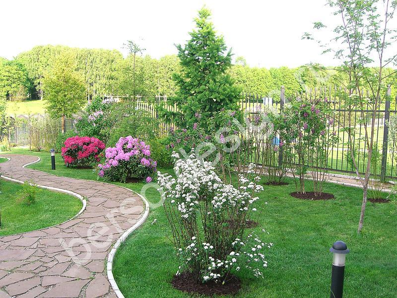 Садовые дорожки — устройство и